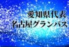 2019年度 第41回 名古屋少年サッカー新人大会 クラブチームの部 (愛知)  優勝は東海スポーツA!