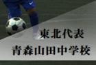 高円宮杯JFA U-18サッカープレミアリーグ2019EAST/WEST ファイナル優勝は青森山田高校!