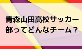 青森山田高校サッカー部ってどんなチーム?決勝で静岡学園と激戦!2019年度 第98回全国高校サッカー選手権