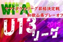 2019年度 U-13サッカーリーグ2020関西 ヤマトタケルリーグ 昇格決定戦 和歌山県プレーオフ 1/25結果 1/26決勝はノガーナ vs アルテリーヴォ