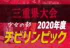 2020年度 新潟県リーグ戦表一覧
