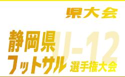 【大会中止】第17回 U-12静岡県フットサル選手権大会 静岡県大会