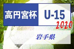 高円宮杯JFAU-15サッカーリーグ2020岩手 7/13までの判明分結果掲載!未入力結果、日程情報お待ちしています!