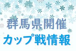 2019年度1月群馬県開催【カップ戦まとめ】情報随時募集!どんどんお寄せください!渋川4年大会結果掲載