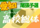 【大会中止】2020年度 第74回愛知県高校総体 サッカー競技 インターハイ 知多支部予選