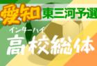 【大会中止】2020年度 第74回愛知県高校総体 サッカー競技 インターハイ 西三河支部予選