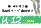 【5/31まで大会延期(中止)】2020年度 第14回埼玉県第4種リーグ 少女  大会情報募集
