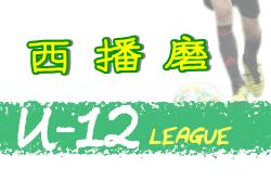 2020年度 西播磨サッカー協会リーグU-12(兵庫)7/5開幕!情報お待ちしています!