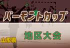 【2020年度リーグを網羅!】2020高円宮ユース(U-15)サッカーリーグ【47都道府県別】