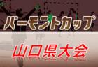 【大会中止】2020年度 第73回広島県高等学校総合体育大会 サッカー男子の部(インターハイ予選) 例年5月末から6/6~に延期