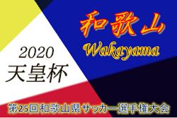 【延期】2020年度 第25回和歌山県サッカー選手権大会 兼 天皇杯JFA第100回全日本サッカー選手権大会和歌山県代表決定戦 準決勝5/3、決勝5/10に延期