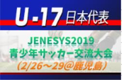 メンバー変更有り【U-17日本代表】高体連からは3名選出!JENESYS2019 青少年サッカー交流大会(2/26~29@鹿児島)メンバー・スケジュール発表!
