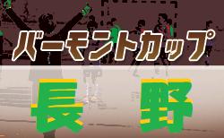 2020年度 JFAバーモントカップ第30回全日本少年フットサル長野県大会 3/28~開幕!組合せ募集