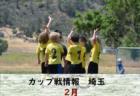 2019年度3月の兵庫県カップ戦まとめ(優勝・上位チーム紹介)【随時更新】
