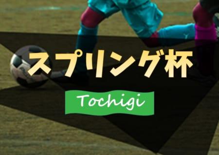 2019年度 第9回スプリング杯 U-11 (栃木県) 3/14,15開催!組合せ募集!