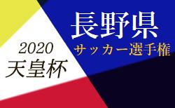 【3・4回戦・準々決勝が中止】2020年度 第25回長野県サッカー選手権大会(天皇杯予選)次回の情報お待ちしております 次回4月開催情報募集