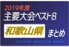 2019年度 兵庫県 主要大会(1種~4種)輝いたチームは!?上位チームまとめ