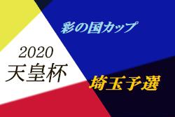 【代表決定戦中止】2020年度 彩の国カップ2020 第25回埼玉県サッカー選手権大会 天皇杯埼玉予選 代表は東京国際大学!