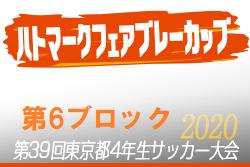 2020年度ハトマークフェアプレーカップ第39回 東京都4年生サッカー大会 6ブロック 5月開催予定!組合せ・日程等募集中!