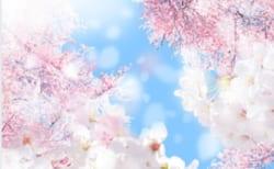 北海道・東北地区の週末のサッカー大会・イベント情報【4月4日(土)、5日(日)】