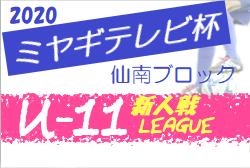 【大会方式変更】2020年度 ミヤギテレビ杯新人大会 (宮城県)  仙南ブロック予選