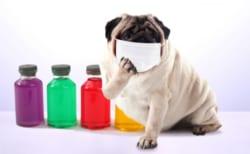 【最新】JFAより「JFA主催のすべての会議・イベント等4/30まで延期」<新型コロナウイルスの対応についての通達>