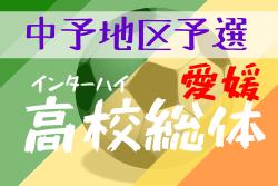 【予選中止】2020年度 愛媛県 高校総体サッカー競技(男子)インハイ 中予地区予選