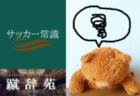 中2病【サッカー用語解説集】