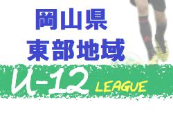 2020年度 第45回 岡山県東部少年サッカーリーグ(高学年の部/U-12東部地域リーグ)7/5結果更新!