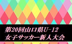 2020年度 第20回山口県U-12女子サッカー新人大会  11/3は決勝トーナメント表掲載!