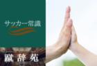 インソール【サッカー用語解説集】