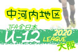2020年度 全日本少年サッカー大会(全日リーグ)U-12 中河内地区 大阪 10/18までの結果入力!