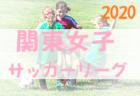 2020年度 2021JA全農杯全国小学生選抜サッカーIN滋賀(U-11チビリンピック)滋賀県大会 優勝はアミティエ!