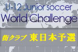 U-12ジュニアサッカーワールドチャレンジ街クラブ予選2020 東日本予選(千葉会場)優勝は柏レイソルA.A.TOR'82!
