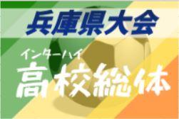 【大会中止・代替大会検討中】2020年度 兵庫県高校総体サッカー競技<男子の部>インターハイ