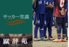 4種【サッカー用語解説集】