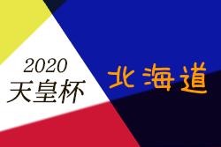【大会中止】2020年度HKFA第2回北海道サッカー選手権大会 兼 天皇杯JFA第100回全日本サッカー選手権大会代表決定戦 5/9,10開催!