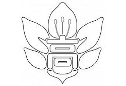 笛吹高校 オープンキャンパスのお知らせ 7/31開催!2021年度 山梨県