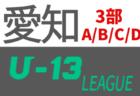 2020年度  愛知県U-13サッカーリーグ<3部> 11/28,29結果更新!入力ありがとうございます!12/5,6