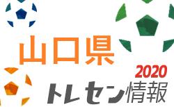 2020年度 YFAキッズエリートスクール(U-9/10) 参加者募集! 締切7/6