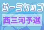 2020年度 第17回 サーラカップ U-10 東三河代表決定戦 (愛知)組合せ掲載!!10/31~開催