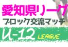2020年度 東三河 U-12サッカーリーグ (愛知)   1部優勝はジョイアFC!2部優勝はFCプログレス!3/21発表分までの結果掲載!