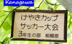 2020年度 けやきカップサッカー大会 3年生の部 (神奈川県) ヴィンクーロ・バディー中和田・大沼・コラソンがベスト4進出!! 9/20,22準々決勝までの全結果更新!情報ありがとうございます!