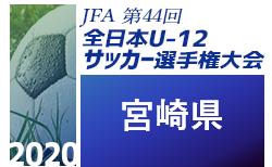 速報!2020年度JFA第44回全日本少年サッカー宮崎県大会  決勝11/29結果更新!優勝はアリーバ(3連覇)!