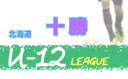 2020年度U-12サッカーリーグ IN 北海道十勝地区リーグ 8/1,2結果掲載!次回8/8,9!