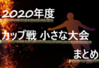 2020年度 サッカーカレンダー【神奈川】年間スケジュール一覧