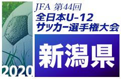 2020年度JFA第44回全日本U-12サッカー選手権大会 新潟大会 1回戦・準々決勝結果速報!準決勝は10/31