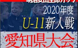 2020年度 第6回明治安田生命カップ 第42回U-11サッカー新人大会  愛知県大会  組み合わせ掲載!情報ありがとうございます!12/13,1/17開催