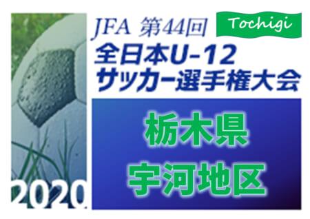 2020年度 全日本U-12サッカー選手権 栃木県大会 宇河地区予選 優勝はS4スペランツァ!県大会出場12チーム決定!9/22第1シード決定戦・第9~12代表決定戦の続報をお待ちしています!