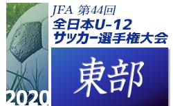 2020年度 JFA第44回全日本少年サッカー大会静岡県大会 東部支部予選 10/11 組合せ掲載